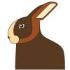 Protokolle Kaninchen